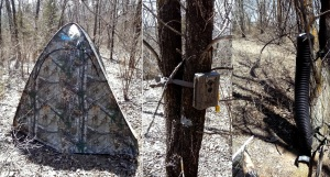 Two-person blind, Moultrie trail cam, and DevourBait deer feeder; ready for Spring hunting.